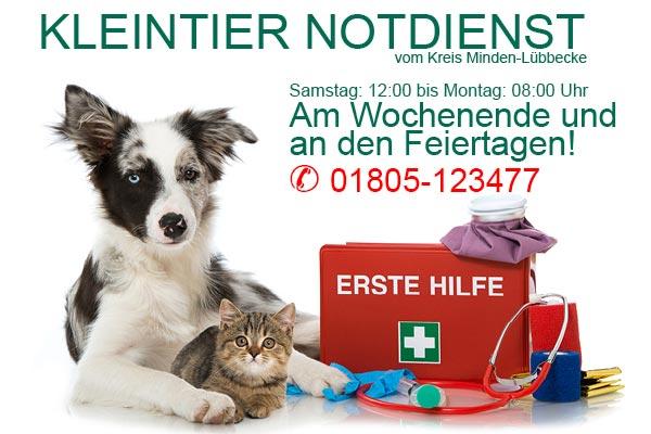 Tierarzt bereitschaft